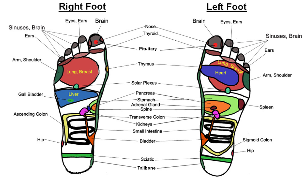 Reflexology Therapy Mahopac Ny Aon Physical Therapy Wellness